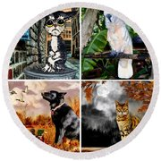 Animals And Wildlife Round Beach Towel