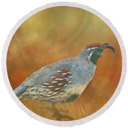 Gambel Quail In Death Valley  Round Beach Towel by Janette Boyd