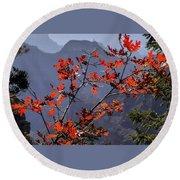 Gamble Oak In Crimson Fall Splendor Round Beach Towel