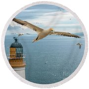 Gannets At Bass Rock Lighthouse Round Beach Towel