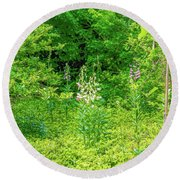 Round Beach Towel featuring the photograph Garden June 2016 by Leif Sohlman