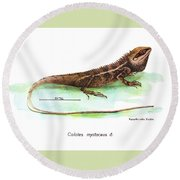 Round Beach Towel featuring the drawing Garden Lizard by Nguyen van Xuan