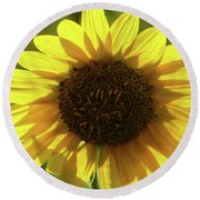 Garden Sunshine Round Beach Towel