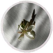 Gardenia On Tablecloths  Round Beach Towel