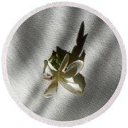 Gardenia On Tablecloths  Round Beach Towel