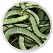 Garter Snakes Pattern Round Beach Towel