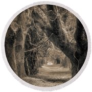 Round Beach Towel featuring the photograph Gateway Through An Avenue Of Live Oaks by Chris Bordeleau
