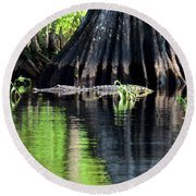 Round Beach Towel featuring the photograph Wild Florida by Carol Bradley