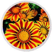 Gazania Splendour Round Beach Towel