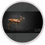 Gazelle Round Beach Towel by Charuhas Images
