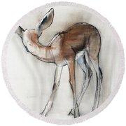 Gazelle Fawn  Arabian Gazelle Round Beach Towel by Mark Adlington