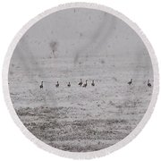 Geese During The Snow Storm Round Beach Towel