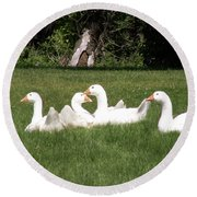Geese In The Grass Round Beach Towel