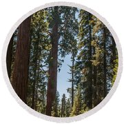 General Grant Tree Kings Canyon National Park Round Beach Towel