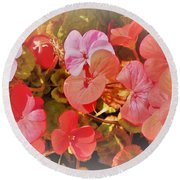 Geranium Round Beach Towel by Ann Johndro-Collins