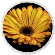 Round Beach Towel featuring the photograph Gerber Daisy by James Sage