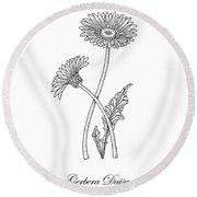 Gerbera Daisy Flower Botanical Drawing  Round Beach Towel