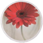 Round Beach Towel featuring the photograph Gerbera Daisy by Lyn Randle