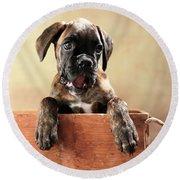 German Boxer Dog Puppy Round Beach Towel