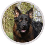 Round Beach Towel featuring the photograph German Shepherd Close Up by Sandy Keeton