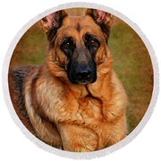 German Shepherd Dog Portrait  Round Beach Towel