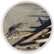 Ghost Crab Eyes The Debris Round Beach Towel