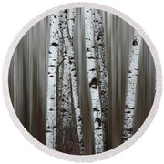 Round Beach Towel featuring the photograph Ghost Forest 1 by Bob Christopher