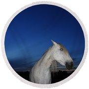 Ghost Horse Round Beach Towel