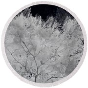 Ghost Of A Tree Round Beach Towel