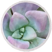 Ghost Plant Round Beach Towel