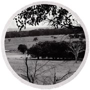 Ghost Tree Round Beach Towel by Cassandra Buckley