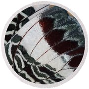 Giant Charaxes Butterfly Round Beach Towel