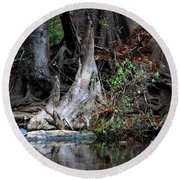 Giant Cypress Knees Round Beach Towel