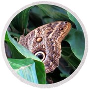 Giant Owl Butterfly Round Beach Towel