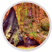 Giant Sequoia Base With Fire Scar Round Beach Towel