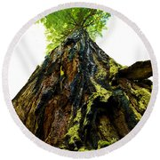 Giants Of The Earth Round Beach Towel