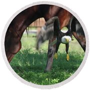 Giddy Up. Round Beach Towel