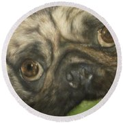 Round Beach Towel featuring the painting Gidget by Cherise Foster