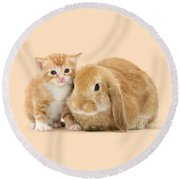 Ginger Kitten And Sandy Bunny Round Beach Towel