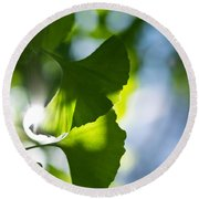 Gingko Leaves In The Sun Round Beach Towel
