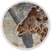 Girafe Head About To Grab Food Round Beach Towel