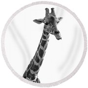 Giraffe In Black And White 3 Round Beach Towel