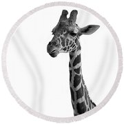 Giraffe In Black And White Round Beach Towel