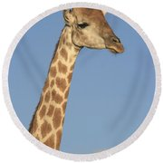 Giraffe Portrait Round Beach Towel