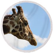 Round Beach Towel featuring the photograph Giraffe Profile by Sheila Brown