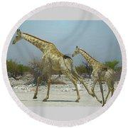 Giraffe Run Round Beach Towel