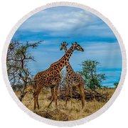 Giraffes On The Serengeti Round Beach Towel