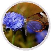 Glasswing Butterfly Round Beach Towel