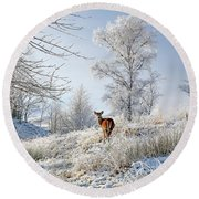 Glen Shiel Misty Winter Deer Round Beach Towel