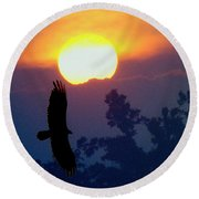 Round Beach Towel featuring the photograph Gliding By The Sun by J R Seymour